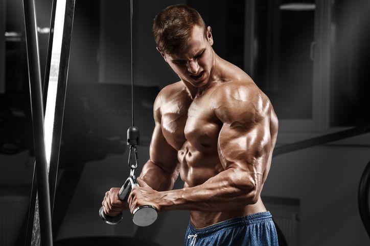Bulgarian Tribulus je najsilnejší stimulant, ktorý sa postará o zvýšenie testosterónu